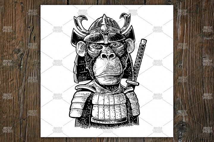Monkey in japan armor with samurai sword behind. Engraving