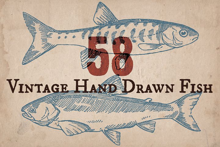 Vintage Hand Drawn Fish