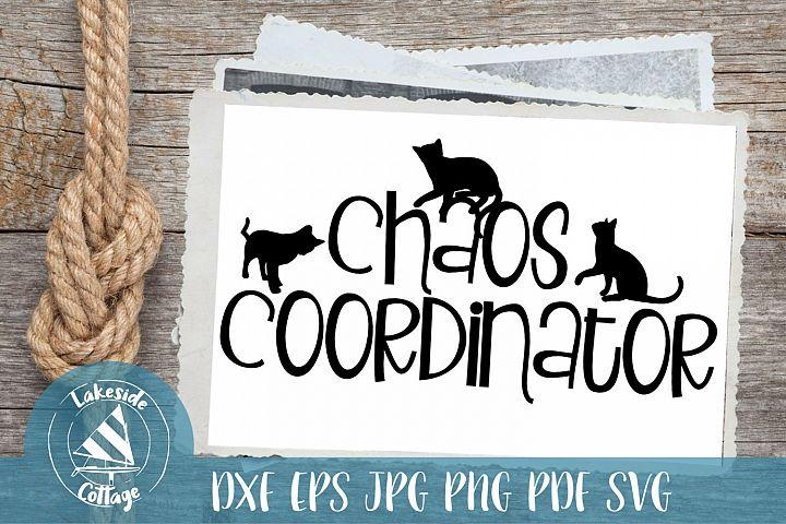 Cat Chaos Coordinator - Cat Lover SVG Design
