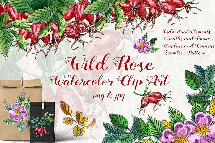 Wild Rose Watercolor Clip-Art