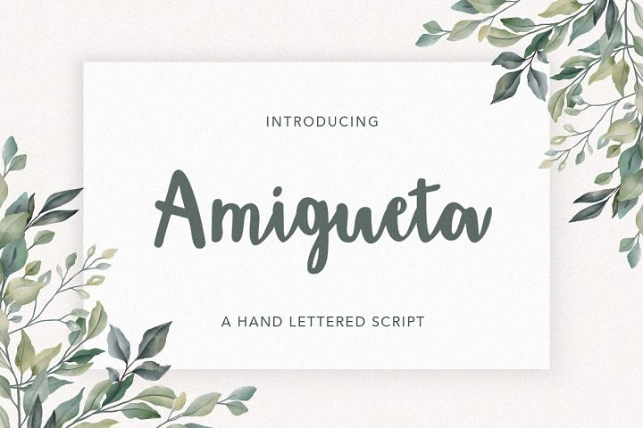 Amigueta Script