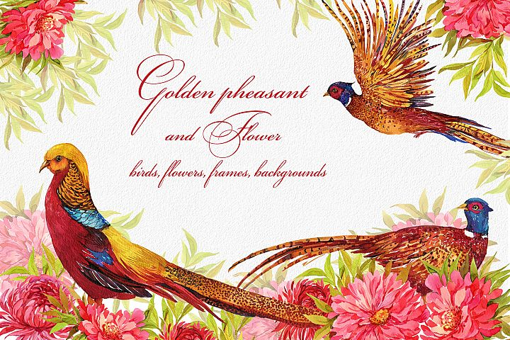 Pheasants, birds and flowers