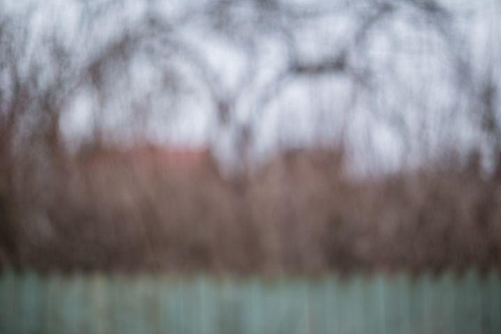 Blurred autumn garden