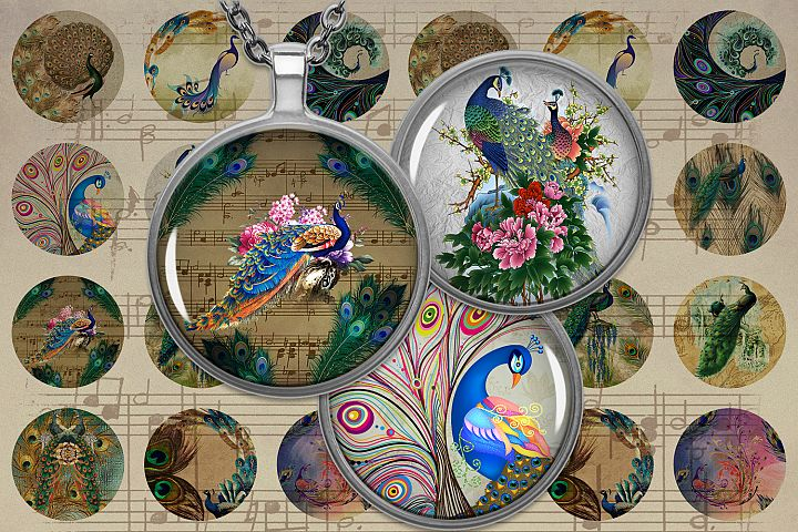 Birds Feather,Peafowl, Colorful Birds, Digital Collage Sheet