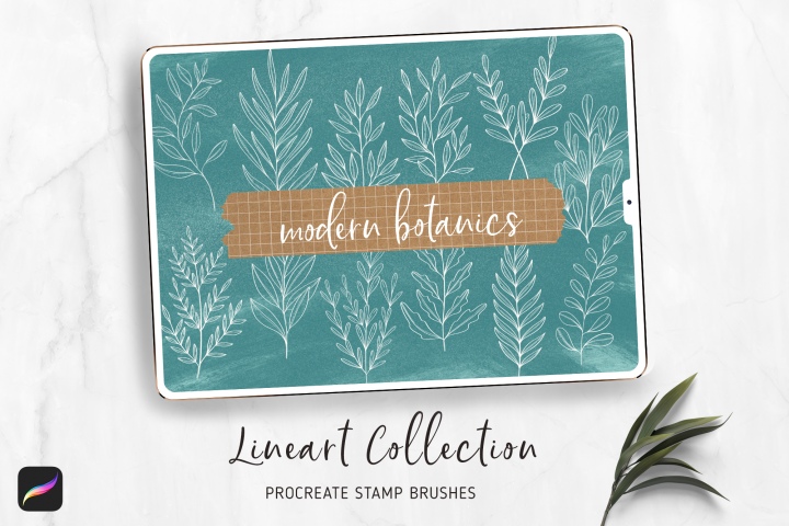 Leaves Procreate Stamp Brushes | Botanical Lineart Style