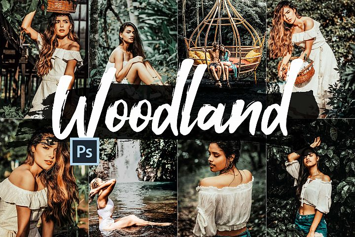 05 Woodland Photoshop Actions, ACR and LUT presets, forest