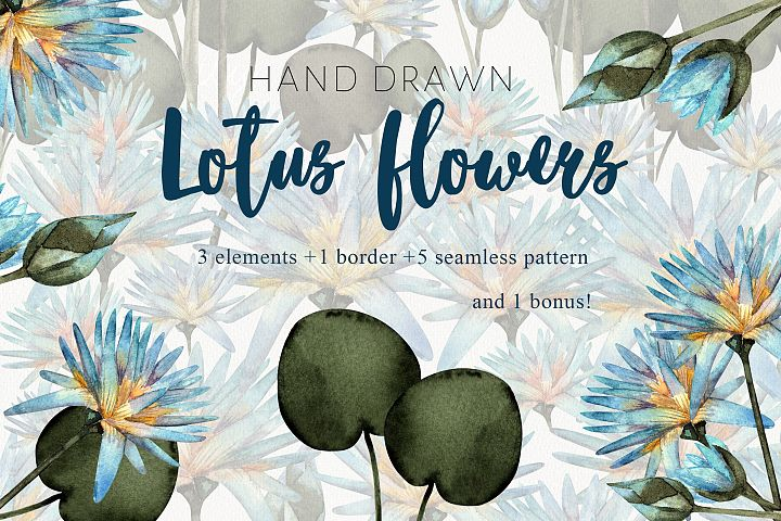 Watercolor lotus flowers.Isolated handrawn, pattern, banner.