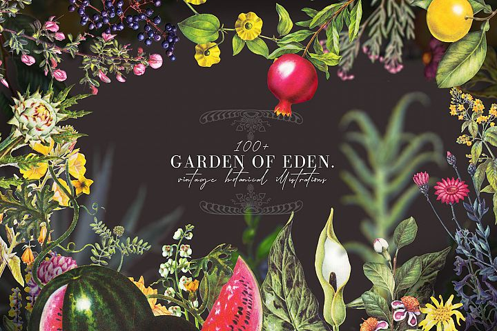 Garden of Eden- vintage botanical illustrations set
