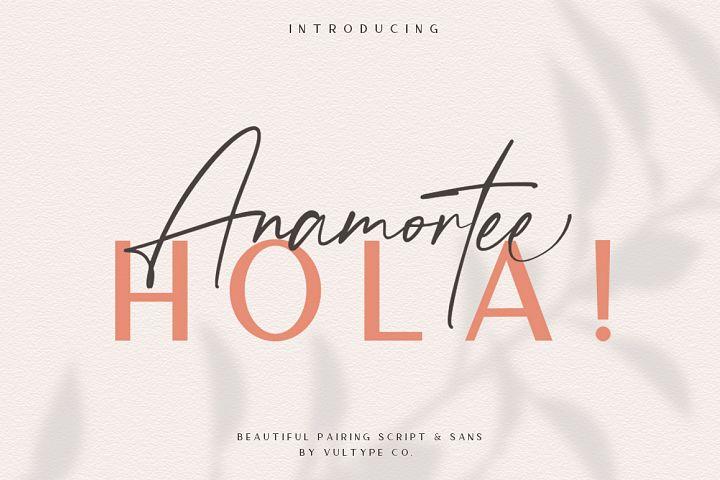 Anamortee // Modern Calligraphy Font