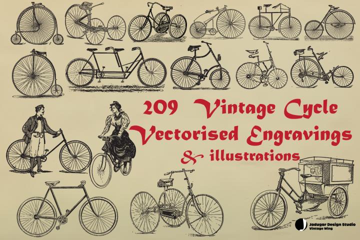 Vintage-209 Cycle