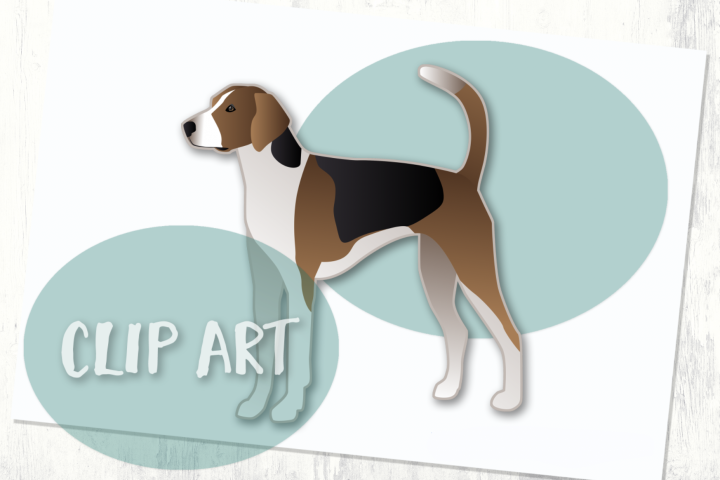 Treeing Walker Coonhound Dog Breed Clip Art