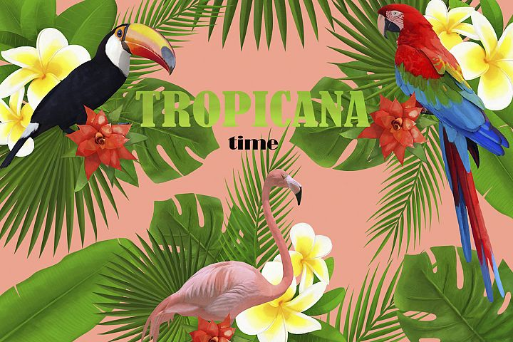 TROPICANA watercolor clipart set