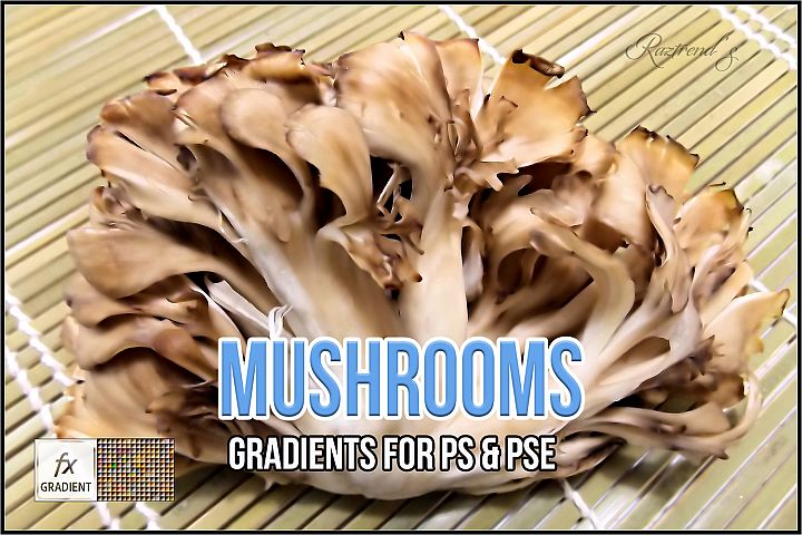 Mushrooms Gradients