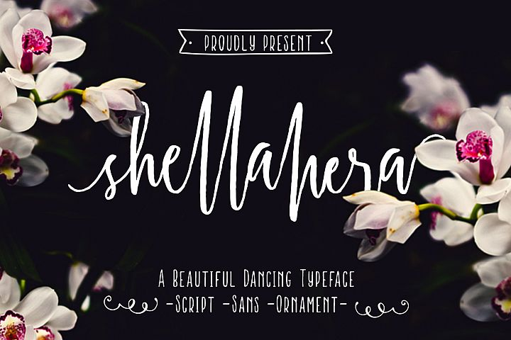 Shellahera Font Bundle