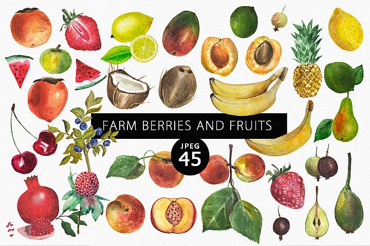 Farm berries & fruits