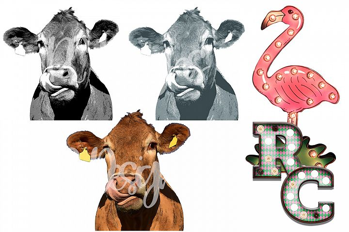 Cow Clipart Bundle