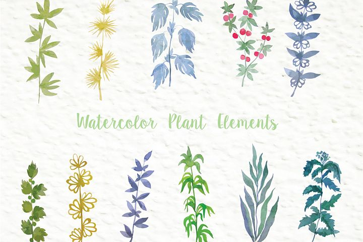 Set of watercolor design elements: rose flowers, plants, butterflies, seamless patterns, splashes.  - Free Design of The Week Design 6