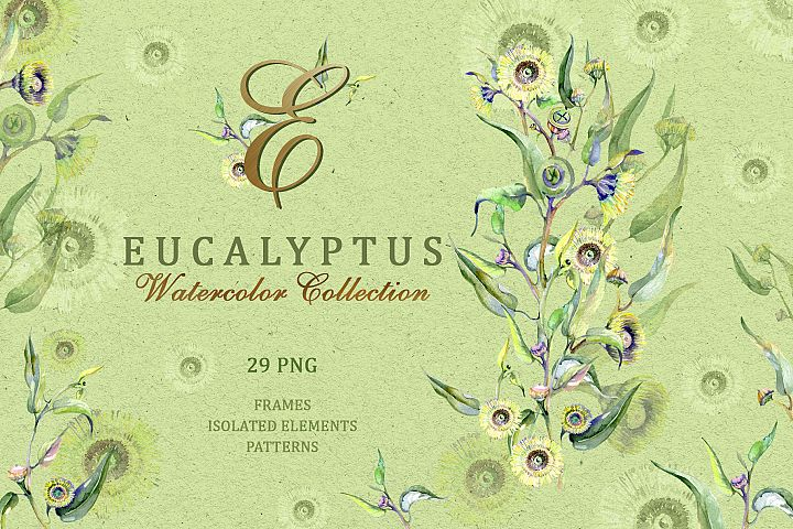 Eucalyptus Watercolor png