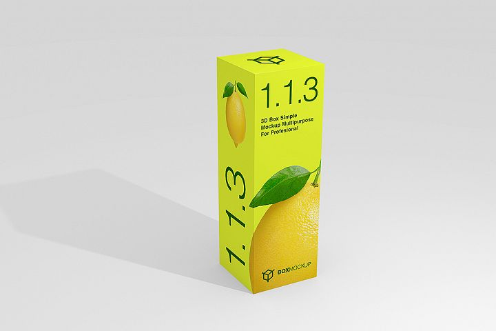 1.1.3 Simple 3D Box Mockup PSD