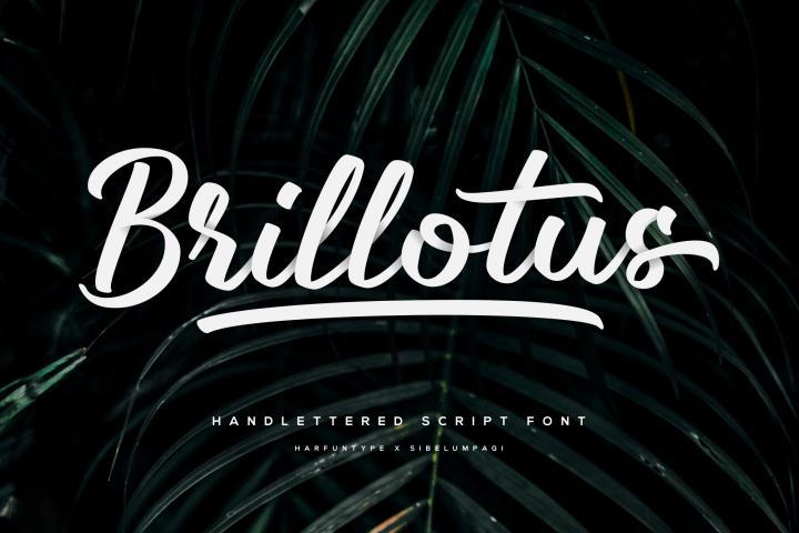 Brillotus - Hand lettered Font