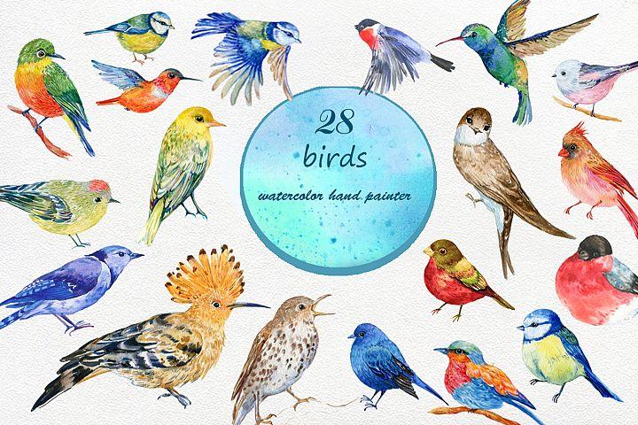 set of watercolor birds