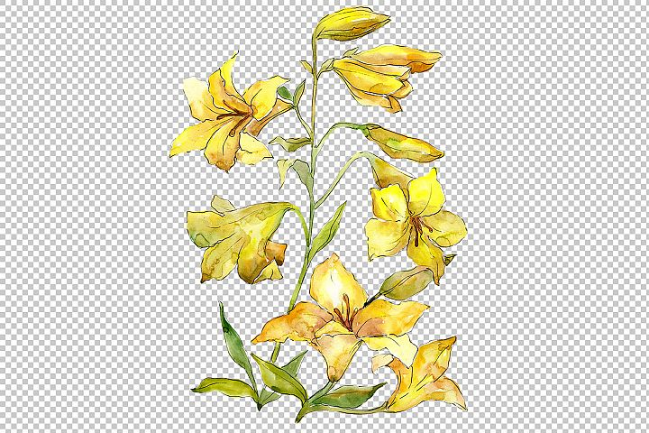 Bouquet of yellow lilies PNG watercolor flower set