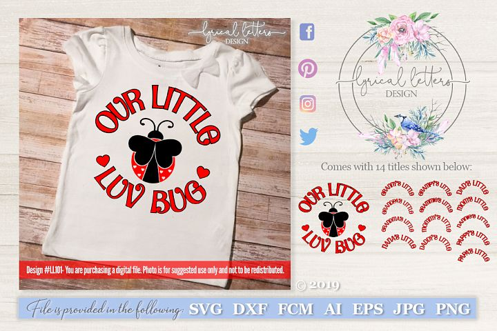 Our Little Love Bug with 13 Titles SVG DXF LL101
