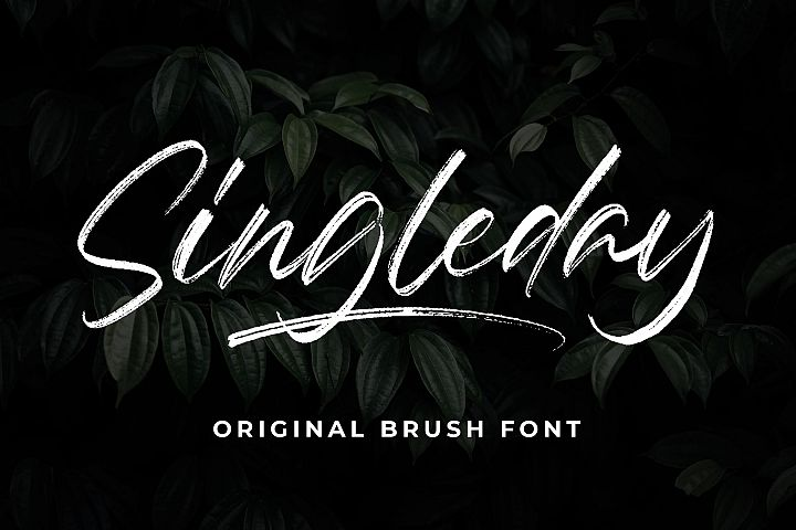 Singleday - Brush Font