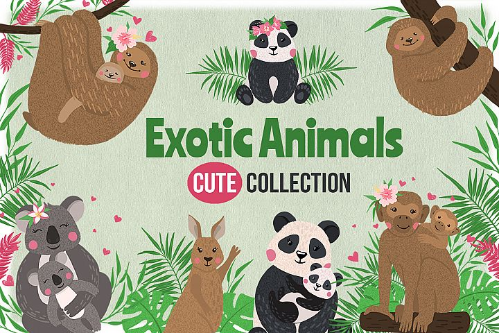 Vector Exotic Animals Collection