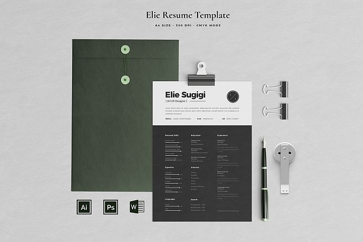 Ellie Resume with Cover Letter Professional Template