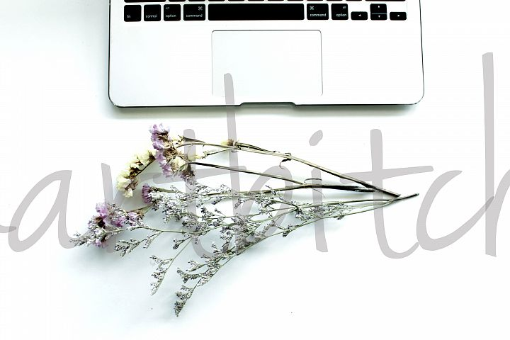 Stock Photo for Bloggers and Instagram - Flowers and laptop