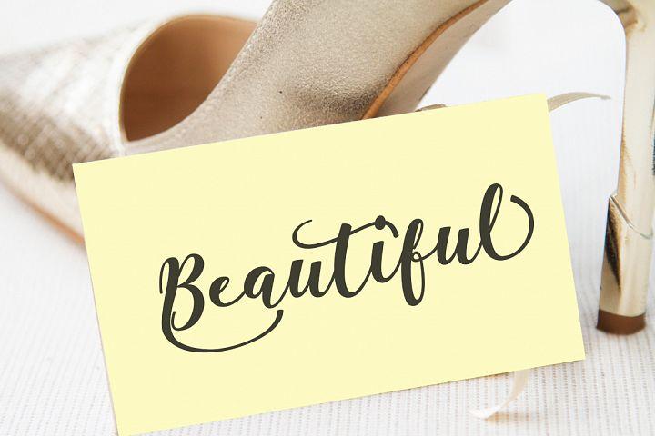Antelope Script - Free Font of The Week Design 4