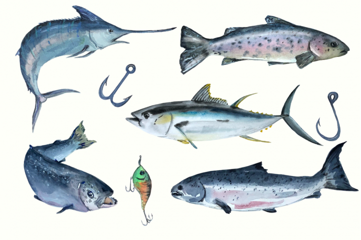 Watercolor Fishing Clip Art Set