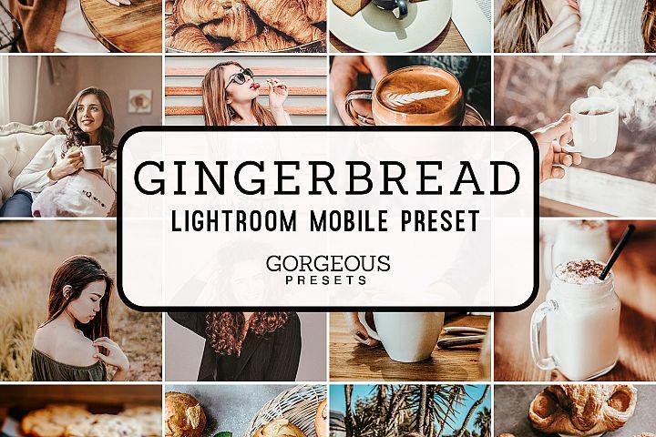 Mobile Lightroom Preset GINGERBREAD