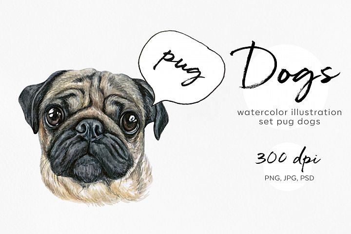 Pug dog. Watercolor dogs illustrations. Cute 9 dogs