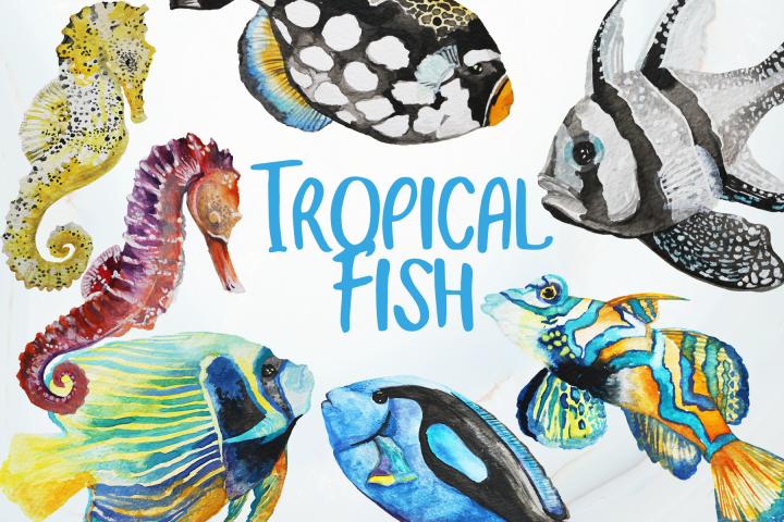Tropical Fish Watercolor Clip Art