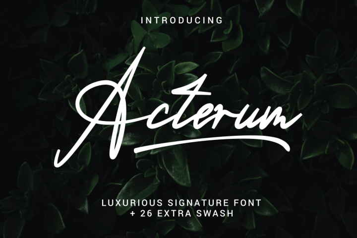 Acterum Signature Font - 26 Extra Swash