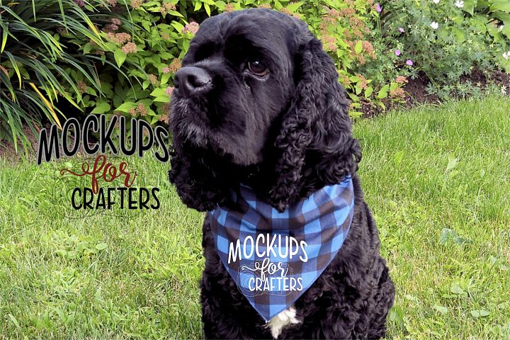 MOCK-UP - Pet Bandana, Dog Bandana, Buffalo Plaid