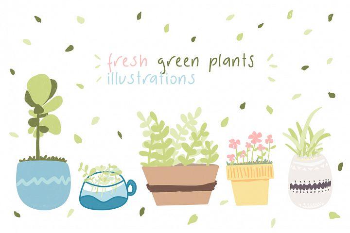 fresh green plants illustrations