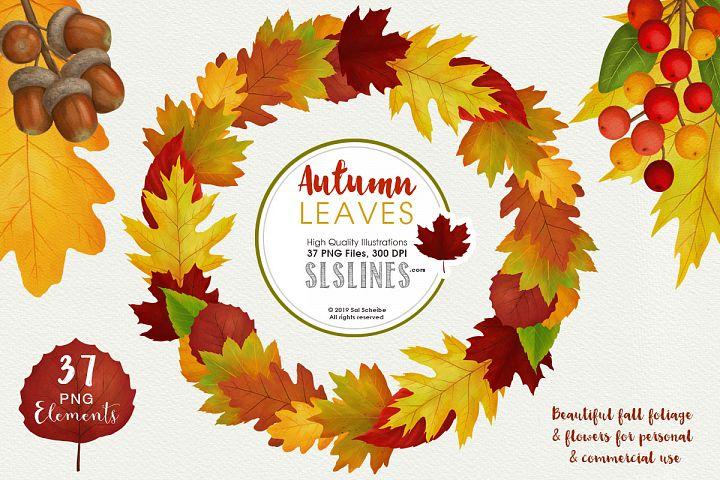 Autumn Leaves Fall Foliage Watercolor Clipart