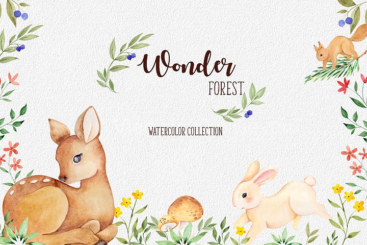 Wonder forest. Watercolor collection