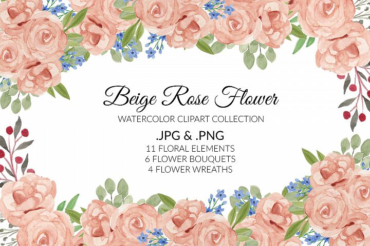 Beige Rose Flower Watercolor Clipart Collection