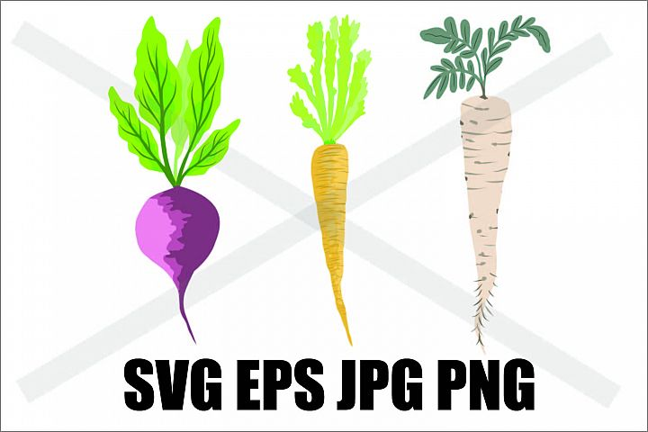 Veggie Drawing - SVG EPS JPG PNG