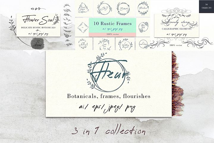 Bundle of vector rustic botanicals, frames and flourishes