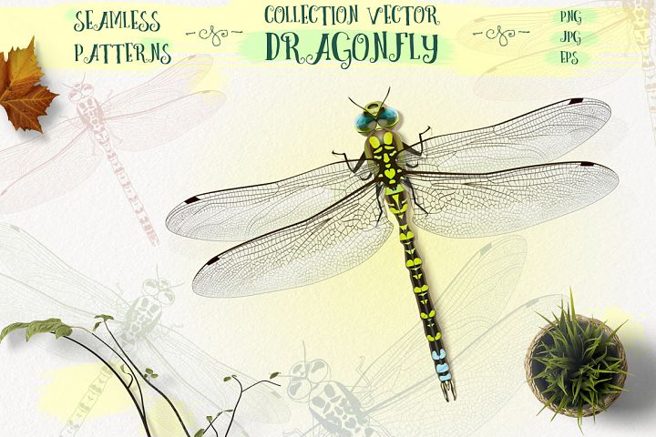 Dragonfly inspiration