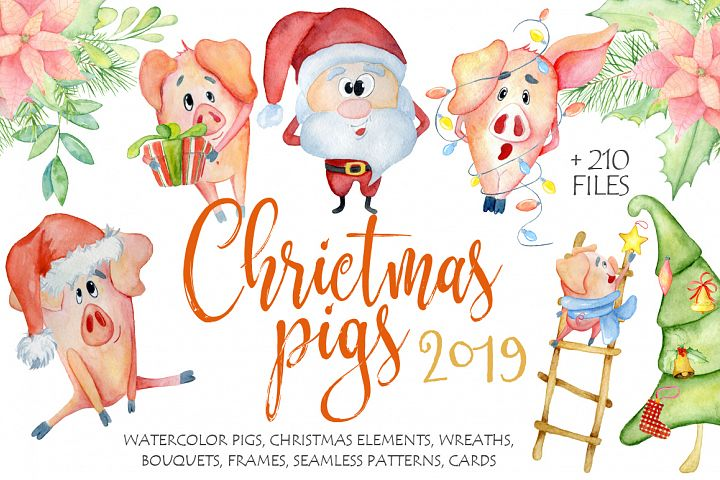 Christmas cute pigs collection with decor elements