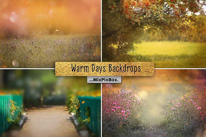 Warm Days Backdrops