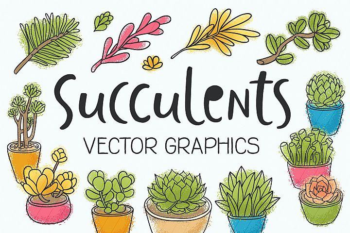 Succulents 14 vector illustrations example