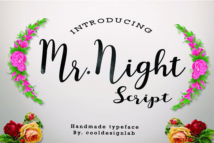 Mr.Night script - Free Font of The Week Font