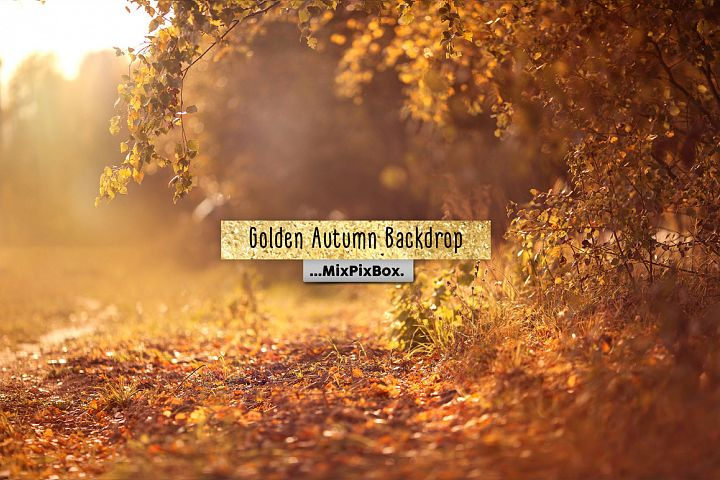 Golden Autumn Backdrop